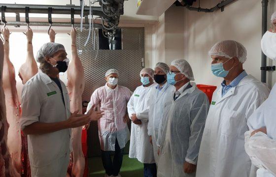 Fairfleisch – Von der artgerechten Haltung bis zu ethisch vertretbarem Schlachten